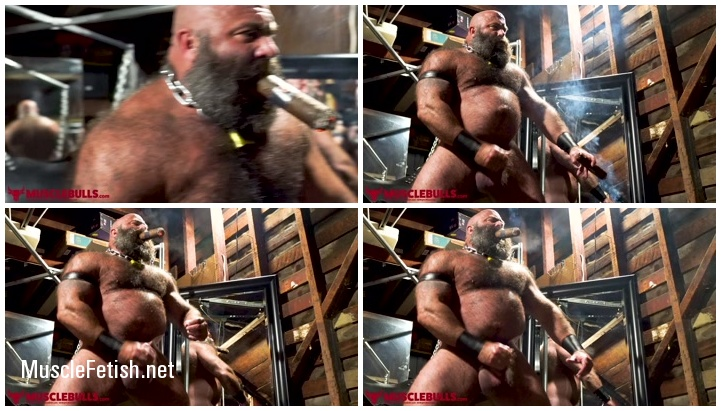 Big Beefy Muscle Bulls - Bull Having A Good Jerk Off (Bull dungeon play Solo)