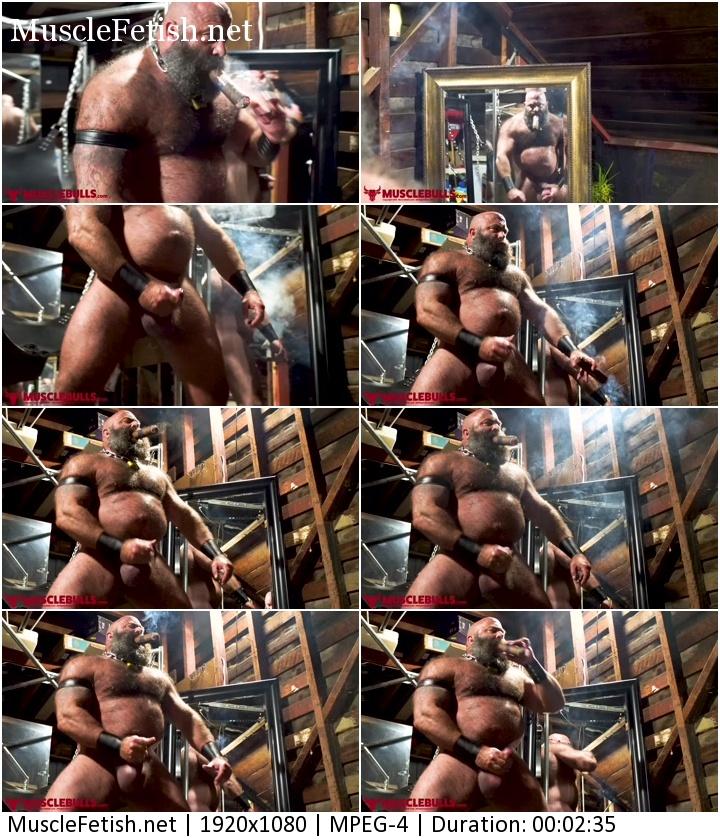 Big Beefy Muscle Bulls - Bull Having A Good Jerk Off (Huge hairy muscles)