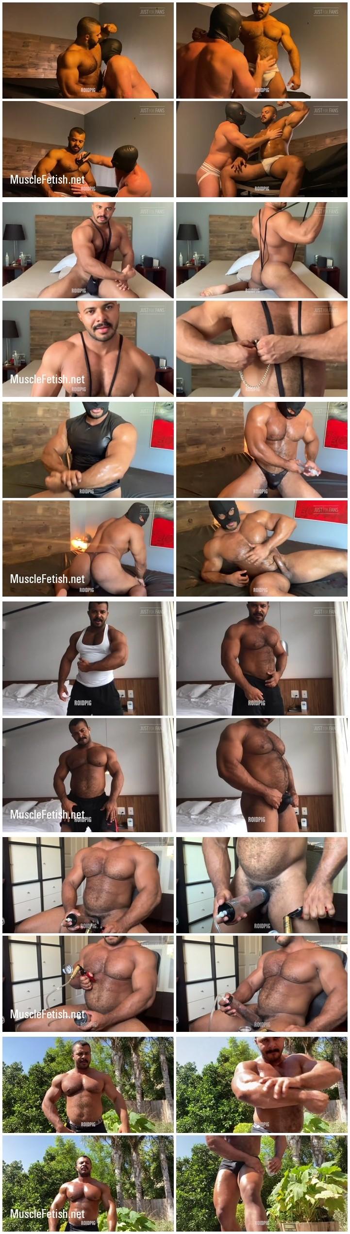Brazilian bodybuilder Roid Pig - onlyfans