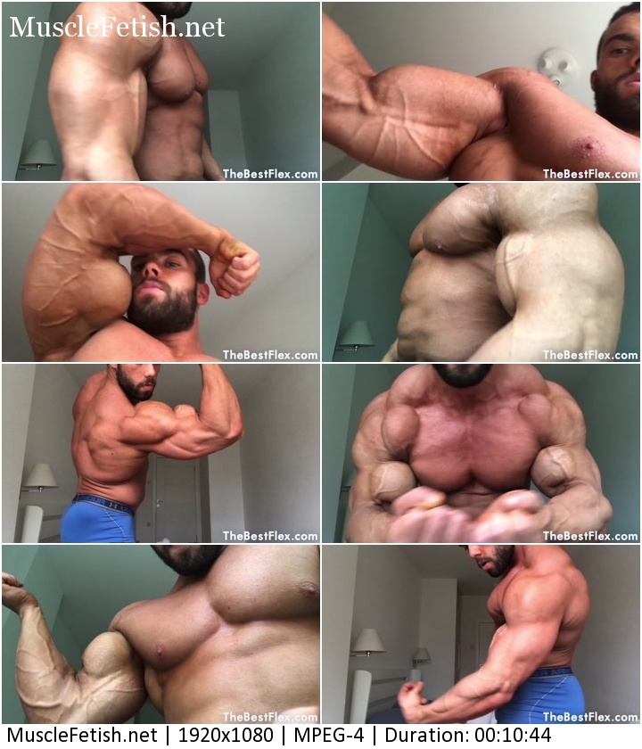 TheBestFlex video - Bodybuilder Zeecko Biceps To Blow Your Mind